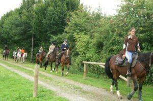 Fez riding poney trekking